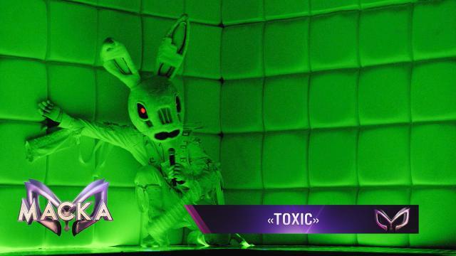 Заяц— Toxic.НТВ.Ru: новости, видео, программы телеканала НТВ