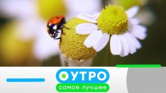 19апреля 2021 года.19апреля 2021 года.НТВ.Ru: новости, видео, программы телеканала НТВ