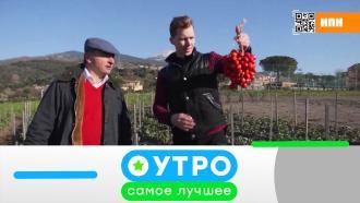 22 апреля 2021 года.22 апреля 2021 года.НТВ.Ru: новости, видео, программы телеканала НТВ