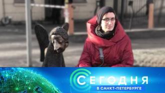 27апреля 2021года. 16:15.27апреля 2021года. 16:15.НТВ.Ru: новости, видео, программы телеканала НТВ