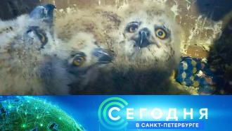 29 апреля 2021 года. 19:20.29 апреля 2021 года. 19:20.НТВ.Ru: новости, видео, программы телеканала НТВ
