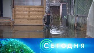 30 апреля 2021 года. 16:00.30 апреля 2021 года. 16:00.НТВ.Ru: новости, видео, программы телеканала НТВ