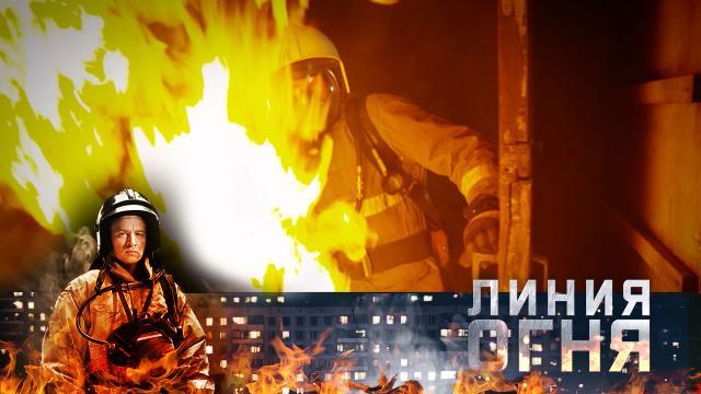 Горячим сердцам огонь не страшен! «Линия огня»— 11мая на НТВ.НТВ.Ru: новости, видео, программы телеканала НТВ