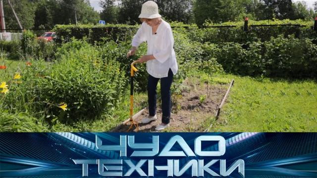 Как не надорваться вогороде ипортятли гаджеты зрение? «Чудо техники»— 10мая на НТВ.НТВ.Ru: новости, видео, программы телеканала НТВ