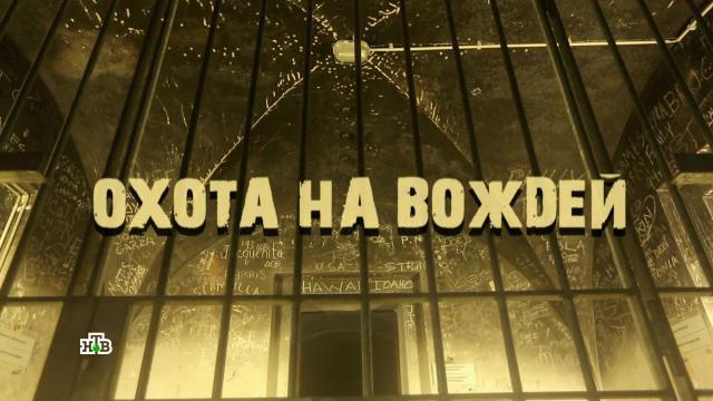 Фильм первый.«Охота на вождей».НТВ.Ru: новости, видео, программы телеканала НТВ