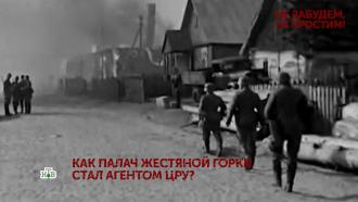 Выпуск от 8 мая 2021 года.«Не забудем, не простим!». 1серия.НТВ.Ru: новости, видео, программы телеканала НТВ
