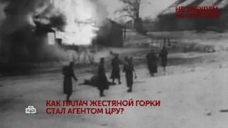Выпуск от 8 мая 2021 года.«Не забудем, не простим!». 2серия.НТВ.Ru: новости, видео, программы телеканала НТВ