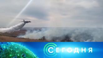 7мая 2021года. 08:00.7мая 2021года. 08:00.НТВ.Ru: новости, видео, программы телеканала НТВ