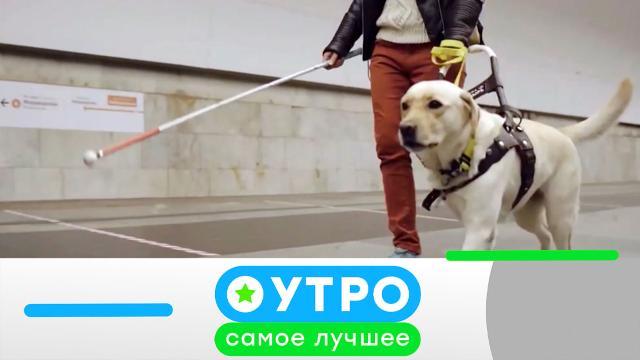 11 мая 2021 года.11 мая 2021 года.НТВ.Ru: новости, видео, программы телеканала НТВ