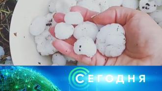 18 мая 2021 года. 08:00.18 мая 2021 года. 08:00.НТВ.Ru: новости, видео, программы телеканала НТВ