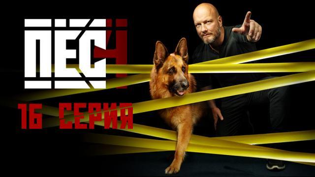 Детектив «Пёс».НТВ.Ru: новости, видео, программы телеканала НТВ