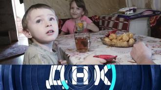 Выпуск от 2июня 2021года.«Бабушкины дети?».НТВ.Ru: новости, видео, программы телеканала НТВ