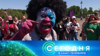 16 июня 2021 года. 16:15.16 июня 2021 года. 16:15.НТВ.Ru: новости, видео, программы телеканала НТВ