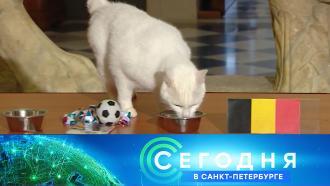 21 июня 2021года. 16:15.21 июня 2021года. 16:15.НТВ.Ru: новости, видео, программы телеканала НТВ