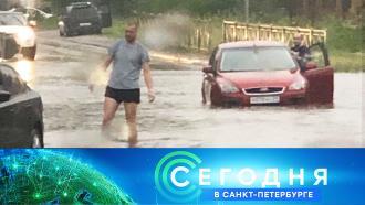 29 июня 2021 года. 16:15.29 июня 2021 года. 16:15.НТВ.Ru: новости, видео, программы телеканала НТВ