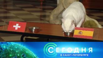 2 июля 2021 года. 16:15.2 июля 2021 года. 16:15.НТВ.Ru: новости, видео, программы телеканала НТВ