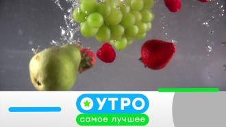 5июля 2021года.5июля 2021года.НТВ.Ru: новости, видео, программы телеканала НТВ