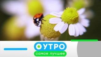 7июля 2021года.7июля 2021года.НТВ.Ru: новости, видео, программы телеканала НТВ