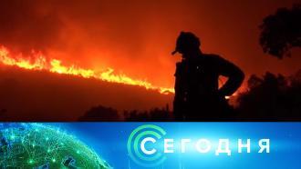 18июля 2021 года. 08:00.18июля 2021 года. 08:00.НТВ.Ru: новости, видео, программы телеканала НТВ