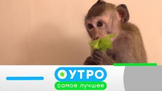 22июля 2021года.22июля 2021года.НТВ.Ru: новости, видео, программы телеканала НТВ
