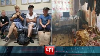 23июля 2021года.23июля 2021года.НТВ.Ru: новости, видео, программы телеканала НТВ
