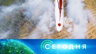 27 июля 2021 года. 10:00.27 июля 2021 года. 10:00.НТВ.Ru: новости, видео, программы телеканала НТВ