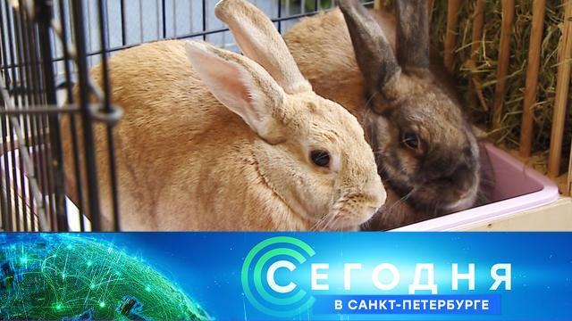 27 июля 2021 года. 19:20.27 июля 2021 года. 19:20.НТВ.Ru: новости, видео, программы телеканала НТВ
