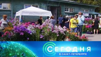 29 июля 2021 года. 16:10.29 июля 2021 года. 16:10.НТВ.Ru: новости, видео, программы телеканала НТВ