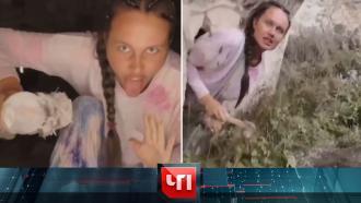 2августа 2021года.2августа 2021года.НТВ.Ru: новости, видео, программы телеканала НТВ