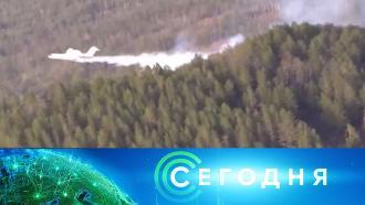 3 августа 2021 года. 10:00.3 августа 2021 года. 10:00.НТВ.Ru: новости, видео, программы телеканала НТВ