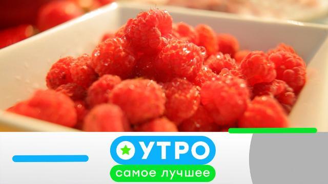 3 августа 2021 года.3 августа 2021 года.НТВ.Ru: новости, видео, программы телеканала НТВ