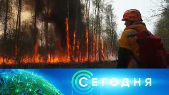 4августа 2021года. 08:00.4августа 2021года. 08:00.НТВ.Ru: новости, видео, программы телеканала НТВ