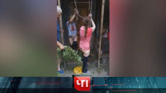 4 августа 2021 года.4 августа 2021 года.НТВ.Ru: новости, видео, программы телеканала НТВ