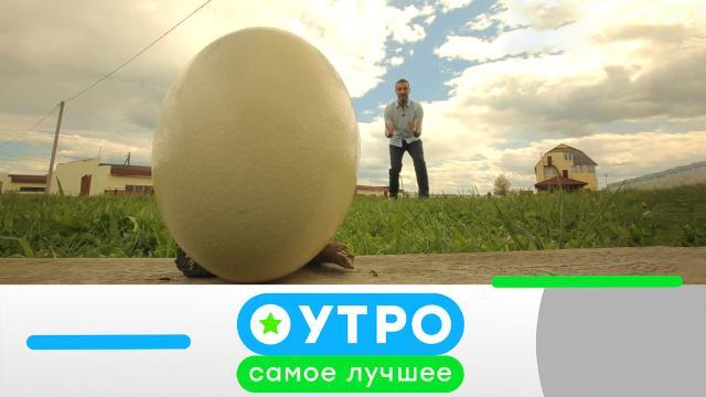 5 августа 2021года.5 августа 2021года.НТВ.Ru: новости, видео, программы телеканала НТВ
