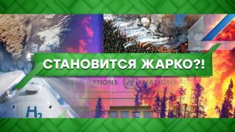 Выпуск от 12августа 2021года.Становится жарко?!НТВ.Ru: новости, видео, программы телеканала НТВ