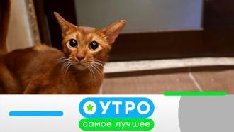 12 августа 2021 года.12 августа 2021 года.НТВ.Ru: новости, видео, программы телеканала НТВ