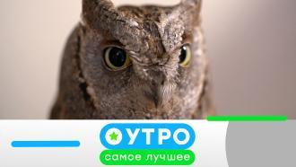 19 августа 2021 года.19 августа 2021 года.НТВ.Ru: новости, видео, программы телеканала НТВ