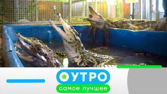 24августа 2021года.24августа 2021года.НТВ.Ru: новости, видео, программы телеканала НТВ