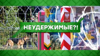 Выпуск от 25августа 2021года.Неудержимые?!НТВ.Ru: новости, видео, программы телеканала НТВ