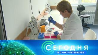30 августа 2021 года. 16:15.30 августа 2021 года. 16:15.НТВ.Ru: новости, видео, программы телеканала НТВ