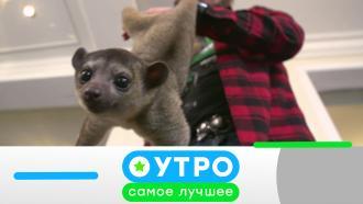 2сентября 2021года.2сентября 2021года.НТВ.Ru: новости, видео, программы телеканала НТВ