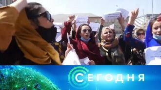 7сентября 2021года. 16:00.7сентября 2021года. 16:00.НТВ.Ru: новости, видео, программы телеканала НТВ