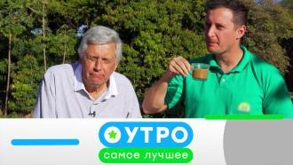 8 сентября 2021 года.8 сентября 2021 года.НТВ.Ru: новости, видео, программы телеканала НТВ
