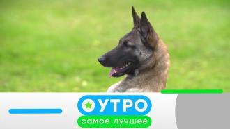 14 сентября 2021 года.14 сентября 2021 года.НТВ.Ru: новости, видео, программы телеканала НТВ