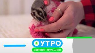 13сентября 2021года.13сентября 2021года.НТВ.Ru: новости, видео, программы телеканала НТВ