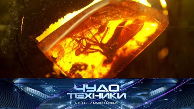 Выпуск от 19сентября 2021года.Целебные свойства янтаря, субстрат для растений ииспользование электроприборов вванной.НТВ.Ru: новости, видео, программы телеканала НТВ