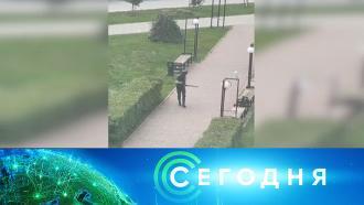 20сентября 2021года. 10:00.20сентября 2021года. 10:00.НТВ.Ru: новости, видео, программы телеканала НТВ