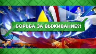 Выпуск от 28сентября 2021года.Борьба за выживание?!НТВ.Ru: новости, видео, программы телеканала НТВ