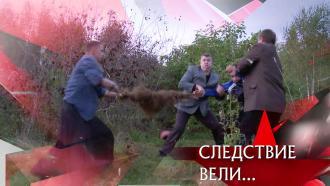 Выпуск от 3октября 2021года.«Мертвый лес».НТВ.Ru: новости, видео, программы телеканала НТВ