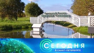 1 октября 2021 года. 16:15.1 октября 2021 года. 16:15.НТВ.Ru: новости, видео, программы телеканала НТВ